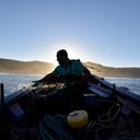 fisheries in chile1 rodrigo oyanedel diaz