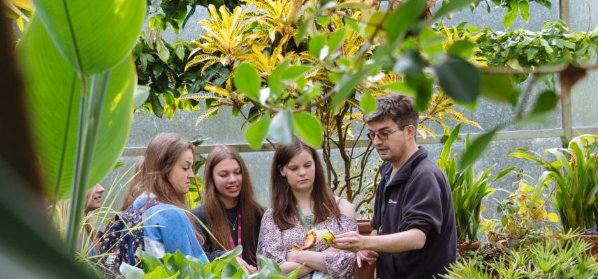 Botanic Garden with Prof Stephen Harris